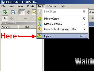 MetaTrader History Data Importing and Converting Tutorial
